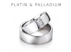6-PlatinPalladium