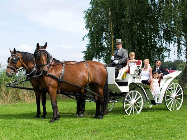 Hochzeitskutschen mieten