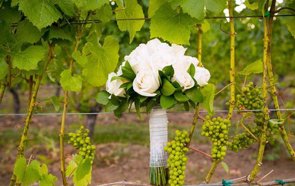 Hochzeit Weingut Patke
